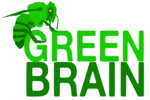 from http://greenbrain.group.shef.ac.uk/